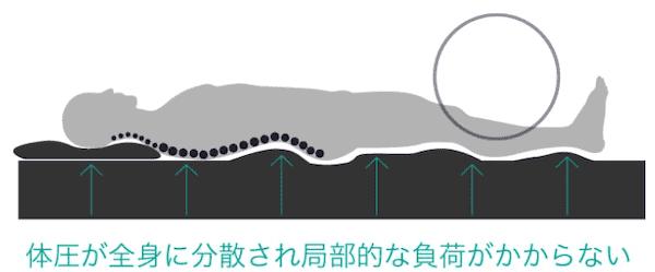 ビブラート1は体の重さを吸収し分散する3