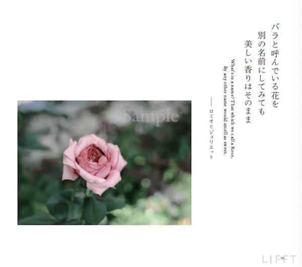 LIFFTジャーナル